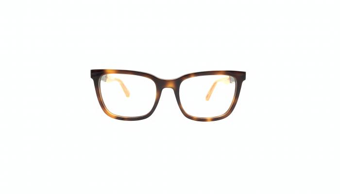 Rame ochelari de vedere - Diesel - DL5321