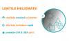 Lentile progresive Ital-Lenti Sky Heliomate Iron sau BluBlock - primul grad de subtiere (1.6)